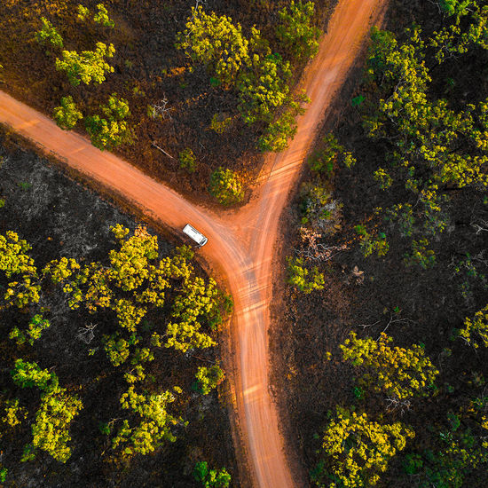 Australia Amazing Top view - Nature Plant Tree Road Nature No People Day Beauty In Nature Scenics - Nature Tranquility High Angle View Outdoors Growth Forest Land Motion Yellow Landscape Transportation Environment Tranquil Scene
