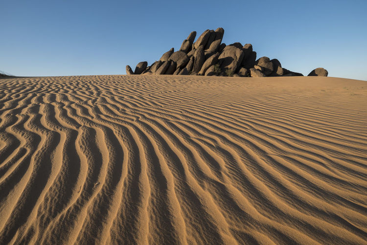 amazing pattern and lines in sunset with rocks in the Background in the desert Pattern, Texture, Shape And Form Sahara Desert Desert Tourist Attraction  Rock Sand Sky Land Scenics - Nature Beauty In Nature Climate Tranquility Tranquil Scene Arid Climate Nature Sand Dune Clear Sky Landscape Non-urban Scene Rock - Object Rock Formation No People Day Outdoors Atmospheric Eroded