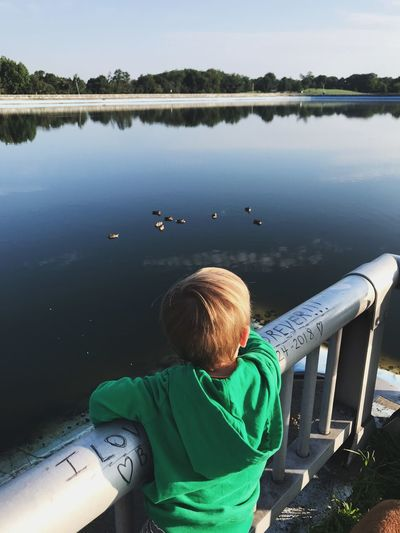 Ducks Lake Boy Ducks Water One Person Real People Lake Men Nature Lifestyles Child Day Outdoors