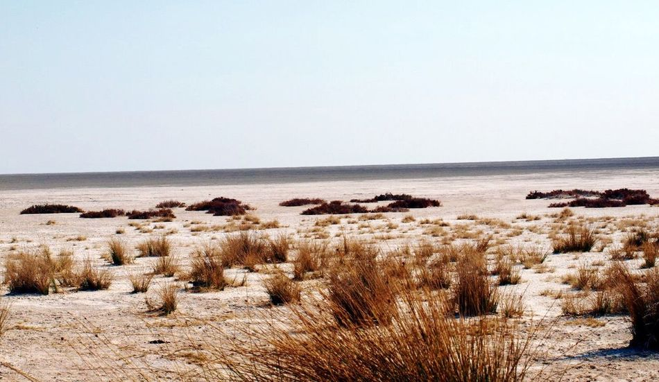 Namibia Deserts Around The World