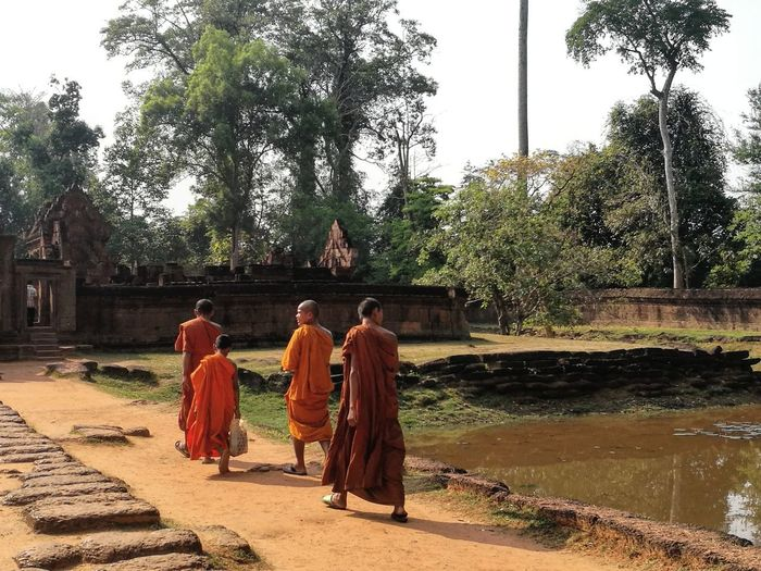 monks at the historical temple Monk  Localtourism Cambodia Worldheritagesite World Heritage ASIA EyeEm Selects Wanderingaroundaimlessly Wanderer Wanderlust Leica Lens EyeEm Gallery Eyeem Cambodia Religion Tree Robe Spirituality Traditional Clothing Togetherness Rear View
