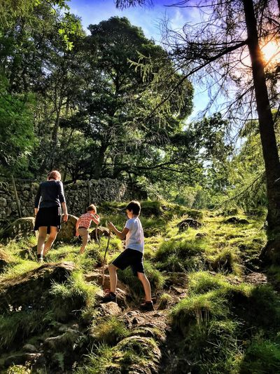 Low angle view of family hiking on grassy mountain during sunny day