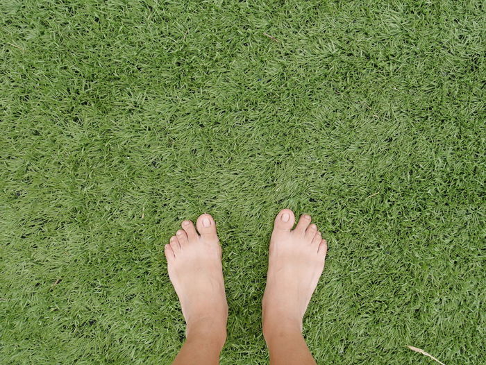Bare feet on grass Foot Adult Adults Only Barefoot Close-up Day Directly Above Grass Green Color High Angle View Human Body Part Human Foot Human Leg Lifestyles Low Section Nature One Person Outdoors People Real People Women