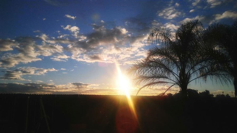 Morning (sonrise) Sunrise ☀ Cloud - Sky Sky Scenics Tree Nature No People Outdoors Beauty In Nature Sunlight And Reflection Tranquility