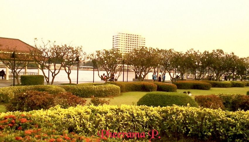 4 Park's photos in Bangkok;Set.1th is Rama 8th Park. Enjoying The Veiw  Silhouettes Of A City , Enjoying Life , Landscape,.