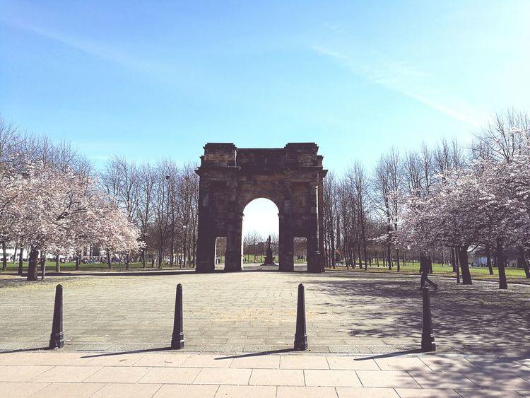 Glasgow  Glasgow Green Cherry Blossoms
