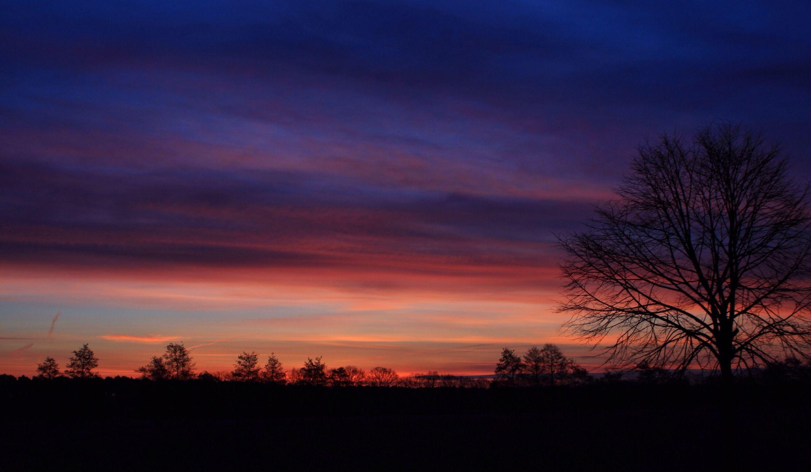 silhouette, sunset, sky, tranquil scene, tranquility, scenics, tree, beauty in nature, bare tree, landscape, cloud - sky, nature, orange color, dramatic sky, idyllic, cloud, field, dark, dusk, outdoors