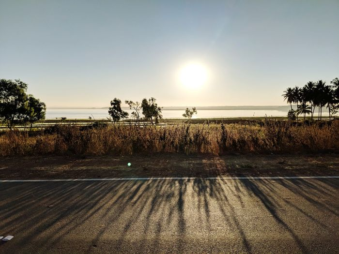 Early Morning Ride Sunrise Sun Rise Collection Sun Rise Ocean Tree Sunset Palm Tree Sun Silhouette Sky