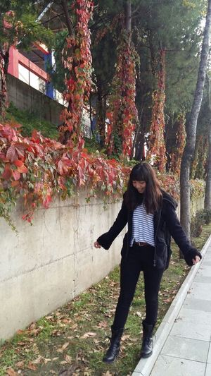 Only Women One Woman Only Front View One Person People Day Women Autumn Real People Nature Full Length Tree Standing Growth Young Women Smiling Long Hair Adults Only Outdoors Adult 😍turkey Takeonphone Nature Flower Flowers Landscape Mountain Flying Second Acts
