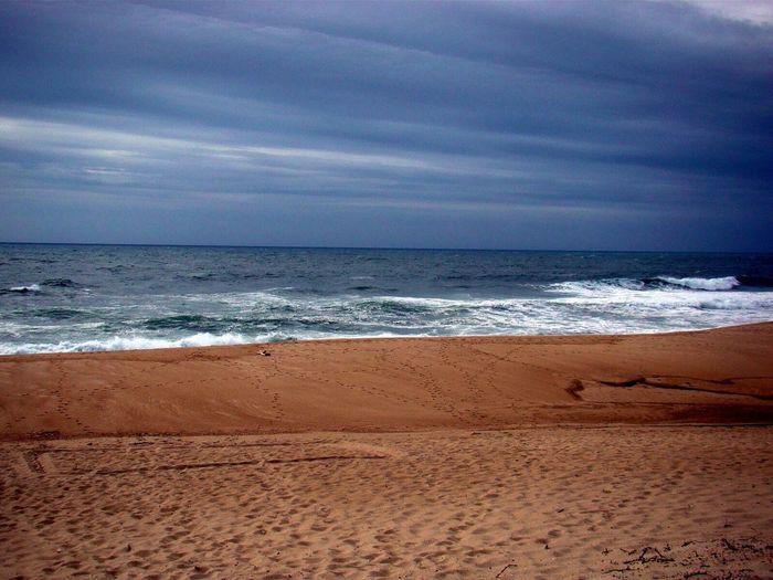 Beach Beachphotography Wetsanding