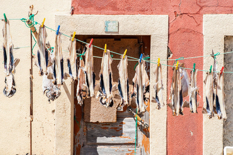 Drying Coathanger Hanging Multi Colored Clothespin Clothesline Laundry Building Exterior Architecture Built Structure Market Stall Various Cloth Farmer Market For Sale Price Tag Retail Display Market Clothes Window Display Display Fish Market Flower Market Raw Street Market Shop Stall