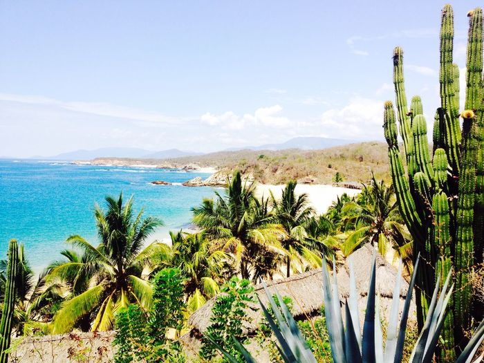 Beach Agusto Vacation Being A Beach Bum Michoacan Playa Traveling Sun Relaxing