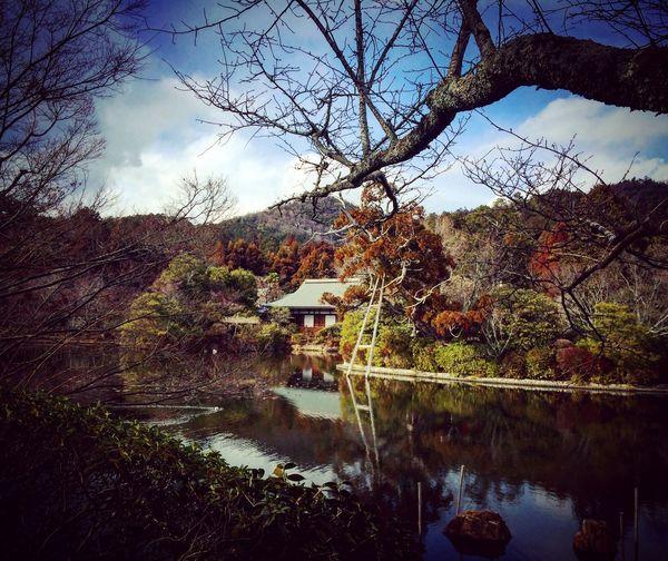 龍安寺 鏡容池 寺社仏閣 京都 Kyoto Enjoying Life