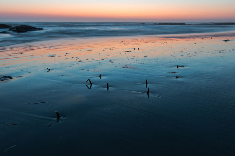 Flock of birds on beach against sky during sunset