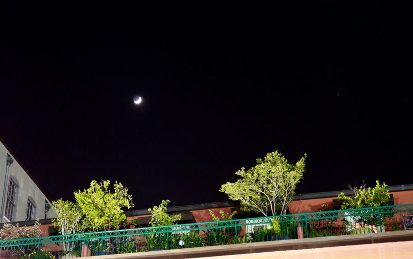 Crescent Moon Magazinestreet NOLA