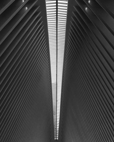 Lookup Ceiling Architecture Lines Geometry Symmetry Blackandwhite Hypnotic Perfect Manhattan NYC Newyork