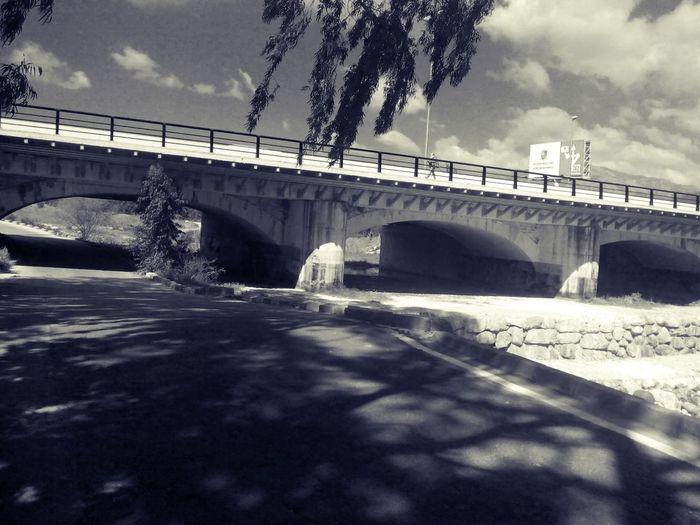 Bridge Nature River