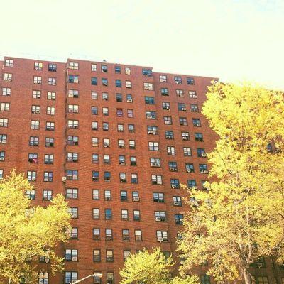 Dyckman Houses Instagramuptown Inwood Uptown Newyorkcity newyork city