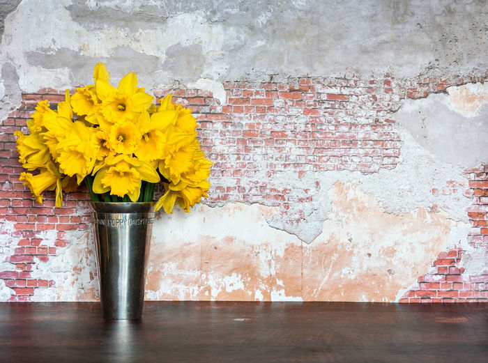 Close-up of yellow flowers on wall