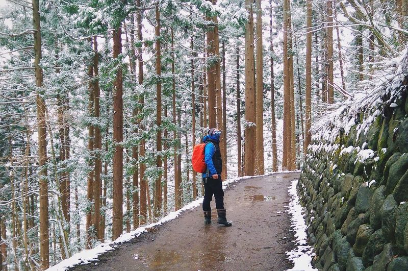 Full Length Man On Footpath In Forest