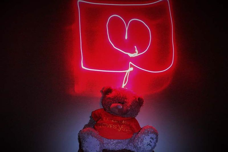 Photography My Photography Canon Teddybear Teddy Bears zhouzhmane akasi ???