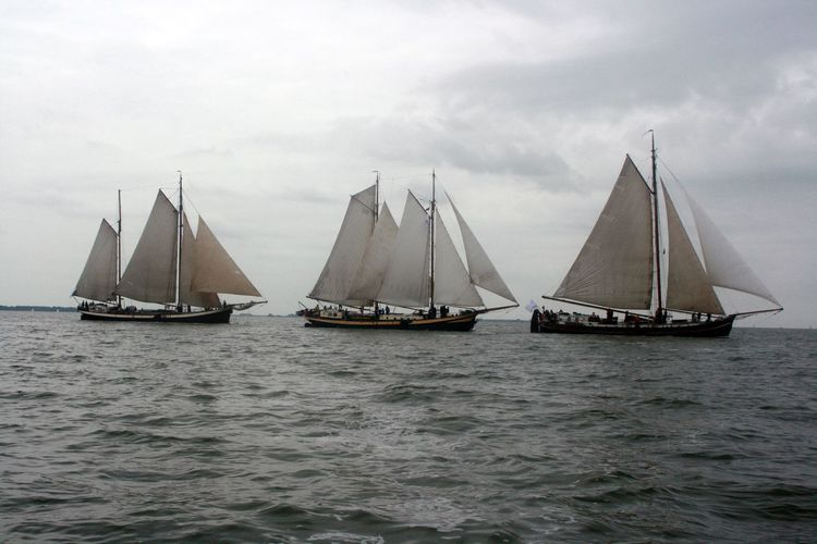 Segeln Skutje Zeilen Competition Horizon Over Water Ijsselmeer Nautical Vessel Regatta Sailing Traditional Sailing Ships