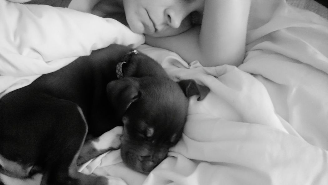 Taking Photos That's Me My Puppy And Me!  Check This Out Enjoying Life Relaxing Crockett,tx My Photos❤ United States I Love Taking Pictures <3 Capture The Moment Pet Photography  Pets Are Family Puppy Love Blackandwhite Photography