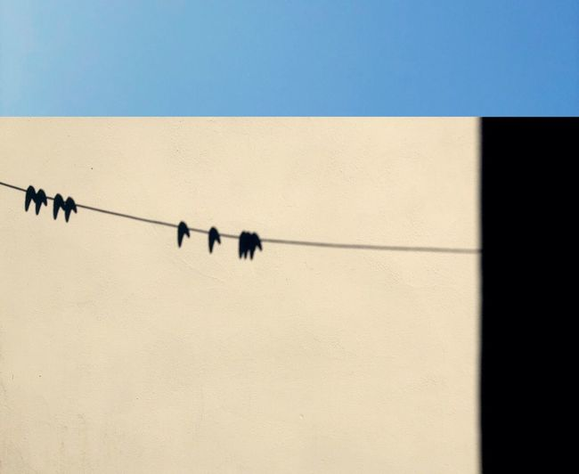 Muswell Hill Minimal Minimalism Sky Clear Sky Wall - Building Feature Shadow