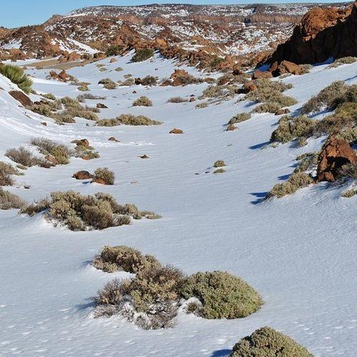 Beautiful Snow Teide Canaryislands