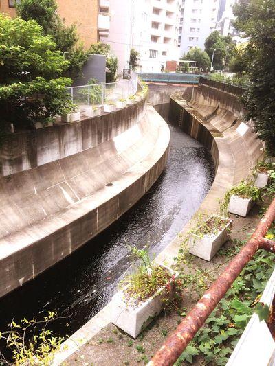 Urban Nature River Uncool Japan Tokyo Olympic Fix It