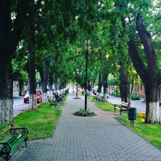 Mycity Cityphotography CityWalk City Street Walking Around Relaxing