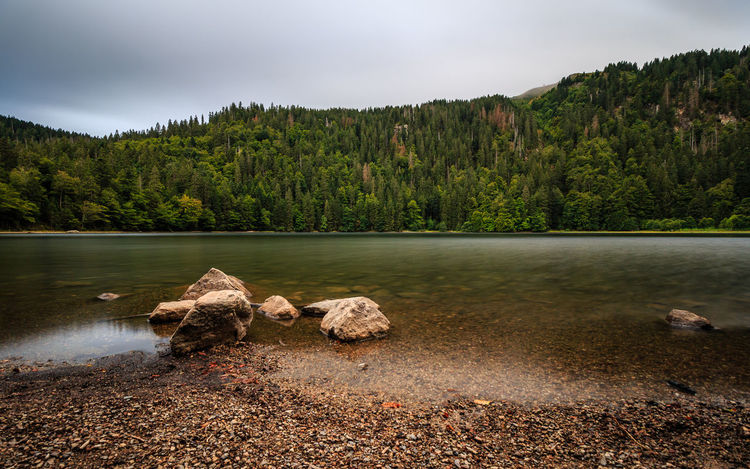 Der Feldsee im Schwarzwald Schwarzwald Beauty In Nature Black Forest Day Feldsee Forest Lake Landscape Long Exposure Mountain Nature No People Outdoors Physical Geography Rock - Object Scenics Sky Tranquil Scene Tranquility Travel Destinations Tree Water
