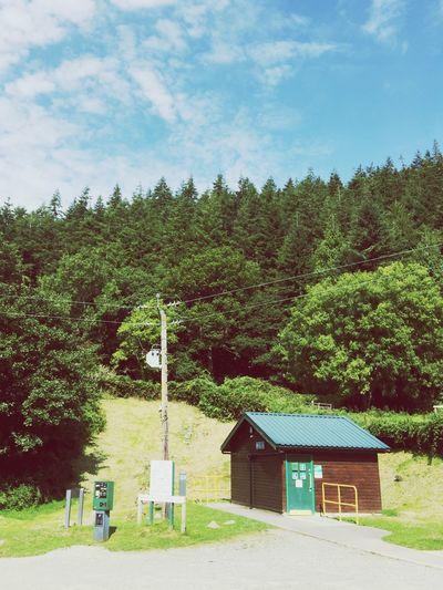 Mountain Trees Treeandsky Summer Views NatureReserve Green