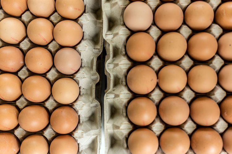 Directly above shot of eggs in carton