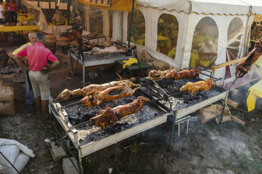 Guca, Serbia, Trumpet Festival Balkans Barbecue Barbecue Grill Food Food And Drink Guca Large Group Of Animals Pigs Preparation  Real People Serbia Serbian Food