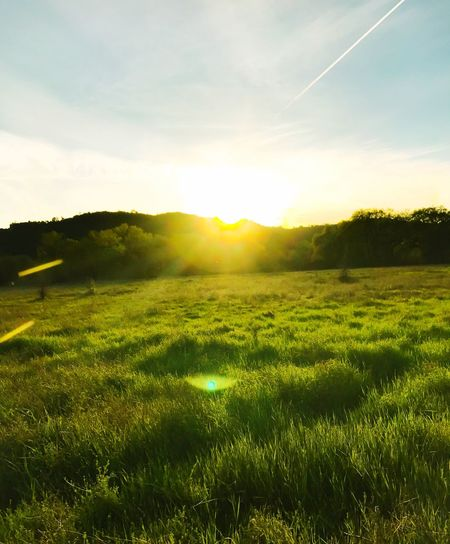 Field Landscape Nature Grass Sky Tranquility Beauty In Nature Tranquil Scene Scenics Sunlight Growth Green Color Sun Idyllic No People Outdoors Rural Scene Agriculture Sunset Tree Nature Weather Mountain Beauty In Nature Tranquility