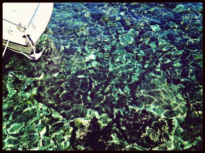 Sea Mallorca Mar