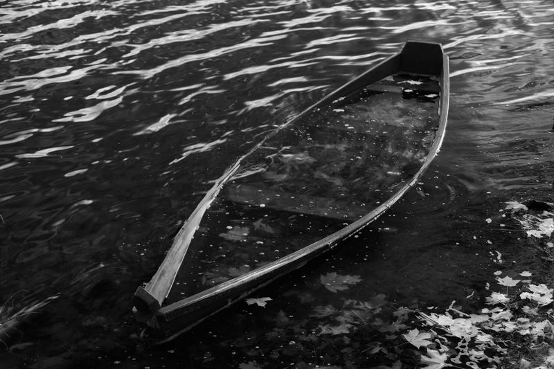 Autumn Black And White Friday Day Drowned Fall High Angle View Lake Nature Nautical Vessel No People Outdoors Submerged Transportation Water