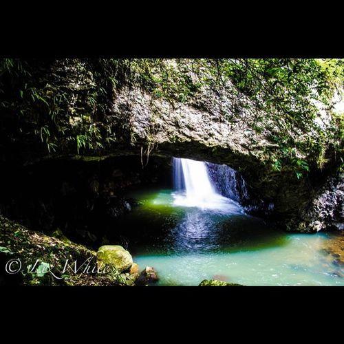 Australia QLD Naturalbridge Waterfall Cave Nikon Tamron