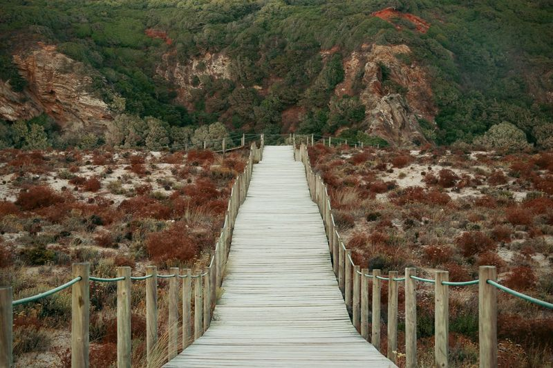 till the end Diminishing Perspective Footbridge Full Frame Mediterranean  Scenics The Way Forward Vanishing Point Vegetation Portugaldenorteasul Portugal_em_fotos Portugal Oficial Fotos Colection EyeEm© Portugal