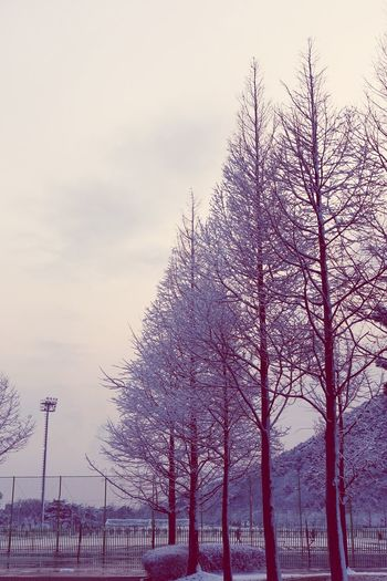 Snow ❄ Snowing