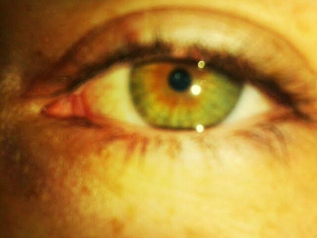 Eyes Beautiful Eyes
