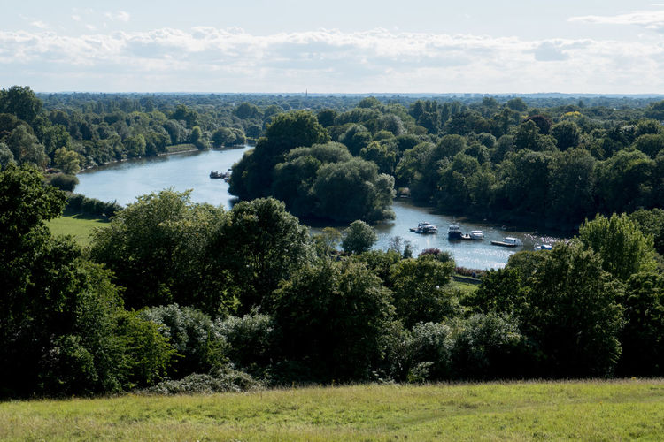 View over The Thames from Richmond Hill Richmond Hill Beauty In Nature Boats Cloud - Sky Day Grass Green Color Landscape Nature Outdoors Scenics Sky The Thames Tree