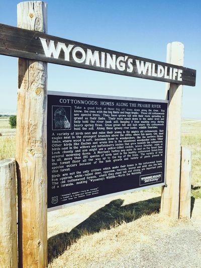 EyeEmNewHere Wyoming