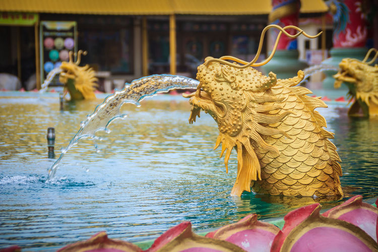 Statue of Chinese dragon fish spraying the water at the fountain in Chinese temple Chinese Temple Ancient Architecture Chinese Temple Detail Fountain Spraying Spraying Water Chinese Temple Chinese Temple Decoration Chinese Temples Dragon Fish Fountain Show Spraying Water In Motion