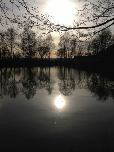 Waterreflection Walking Around Sun Taking Photos Eye Em Scotland Scotland Nature