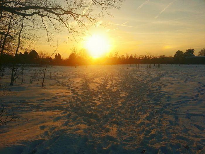 Sundown Snow Snosteps Winter Winter Wonderland