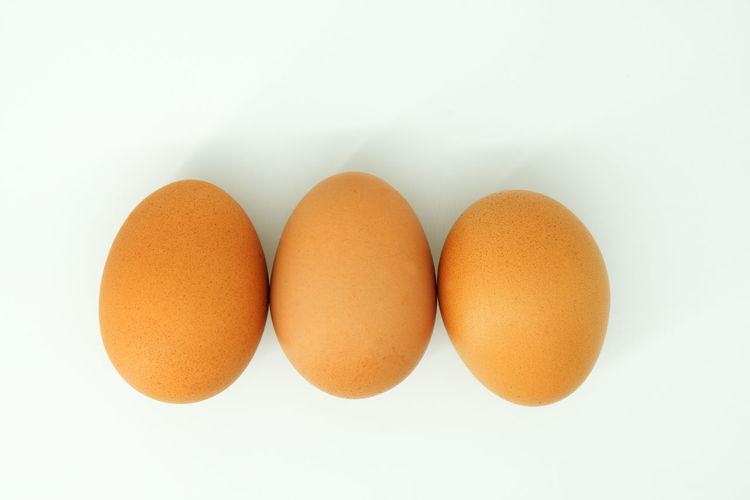 Directly above shot of eggs against white background