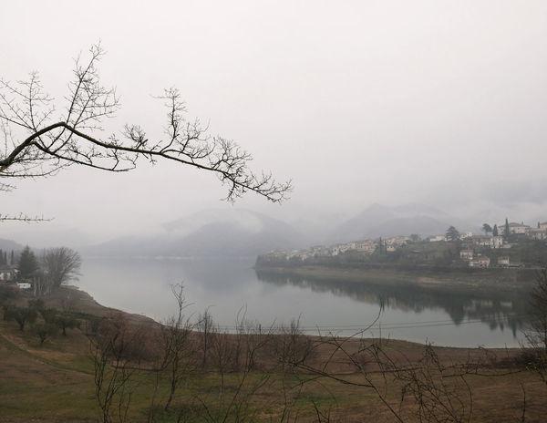 Bare Tree Fog Foggy Grey Hazy  Lago Del Turano Lake Landscape Mist Scenics Tranquil Scene