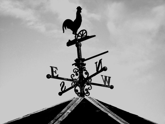 Weather Vane B/w B/w Collection B/w Daily B/W Photography Clouds Cockrel Day Daytime East Eye Em Scotland Light Low Angle View Metal Metallic No People North Rooftop Scotland Silhouette Sky Sky And Clouds South Uk Weather Vane West